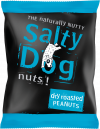 Salty Dog Dry Roasted Peanuts 24x45g